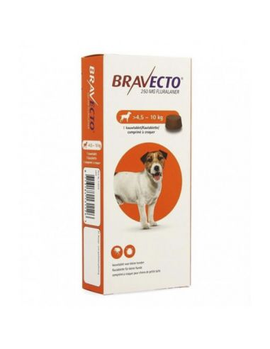 Royal Canin BHN French Bulldog Junior - Bulldog Frances Cachorro 10 kg