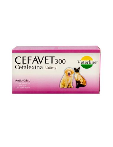 Royal Canin BHN Bulldog Adult - Adulto 3 kg