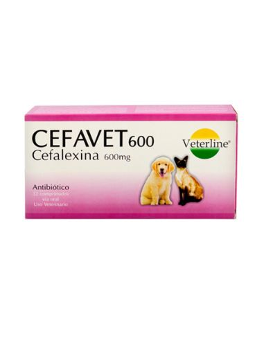Royal Canin BHN Bulldog Junior - Cachorro 3 kg