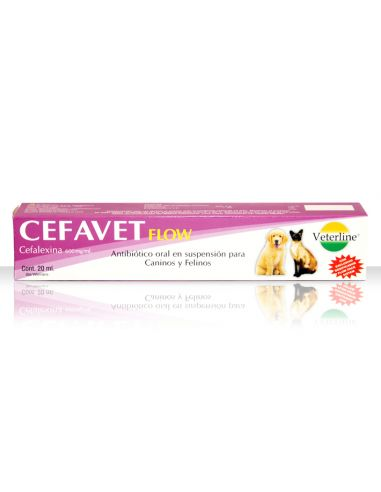 Royal Canin BHN Bulldog Junior - Cachorro 12 kg