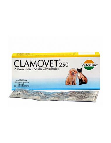 Royal Canin VD Dog Cardiac - Cuidado Cardíaco 14 kg